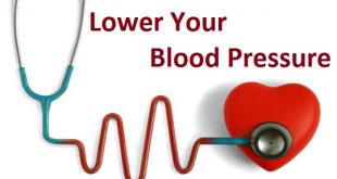 lower blood pressure with lingzhi